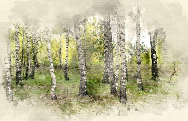 桦树叶子绿色树丛可以 向量例证