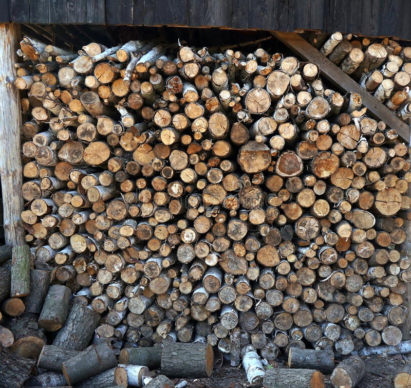 桦树和橡木,在堆组成的木柴,背景 库存图片