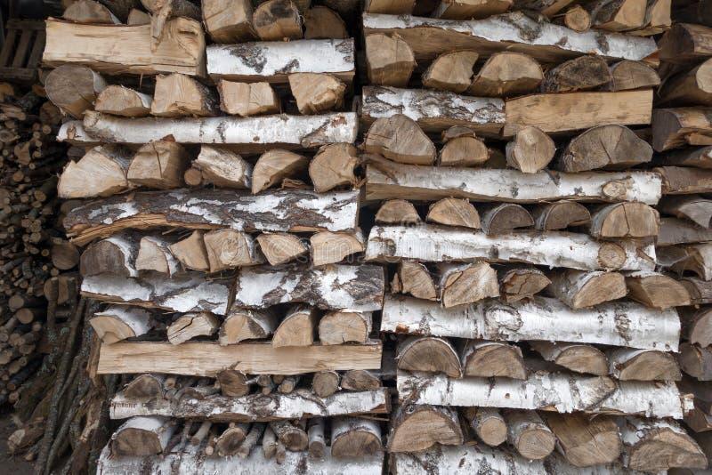 桦树木头柴堆  库存照片