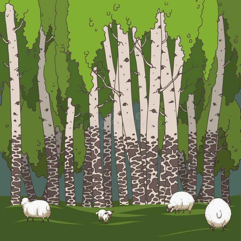 桦树树丛和绵羊 皇族释放例证