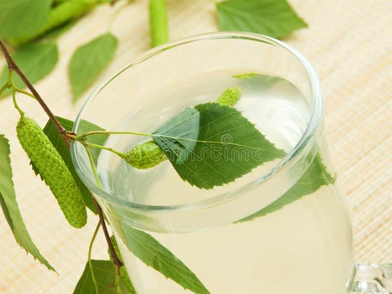 桦树树汁 图库摄影