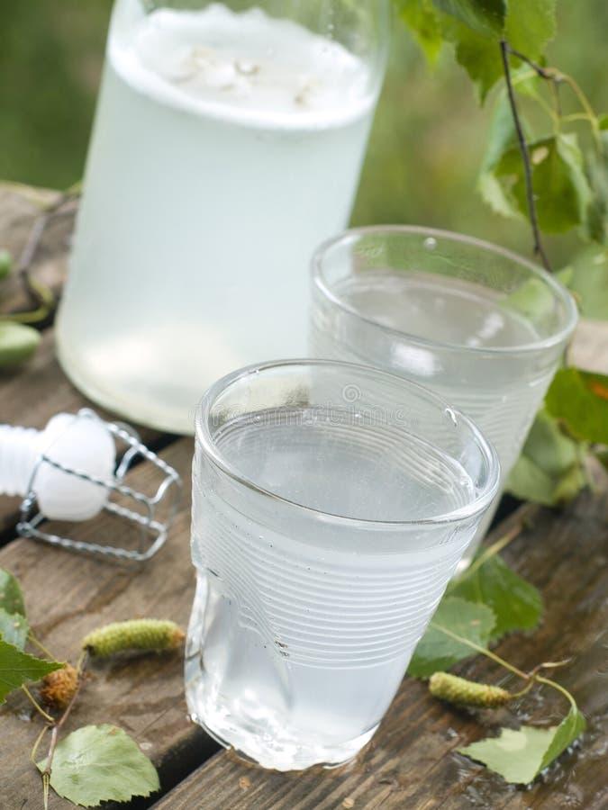 桦树汁液 库存照片
