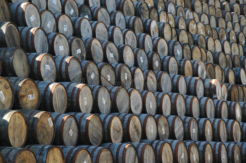 桶堆积了威士忌酒 库存图片