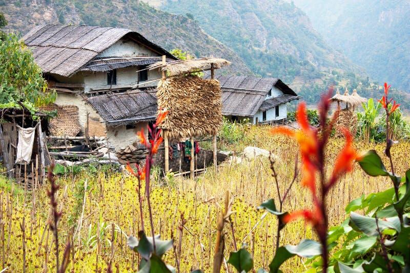 桶盖-尼泊尔counryside 库存图片