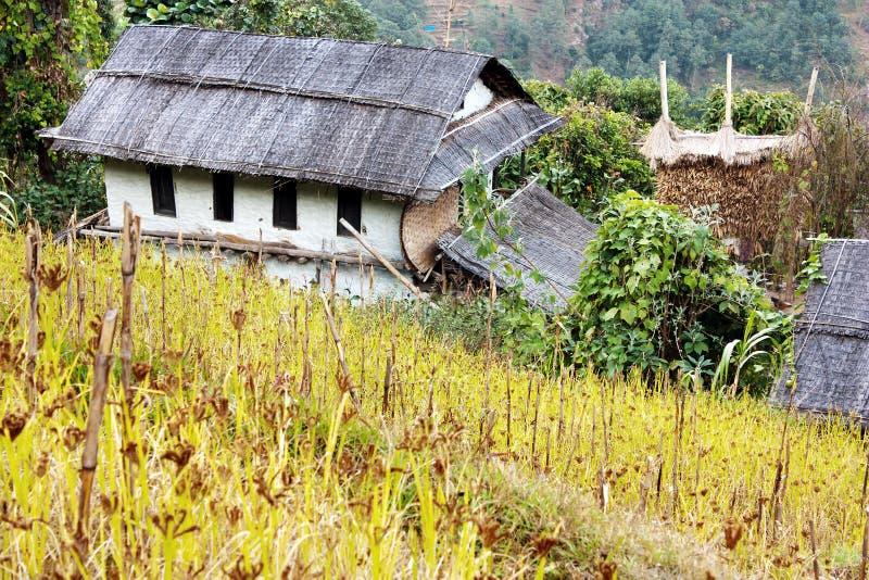 桶盖counryside尼泊尔 库存图片