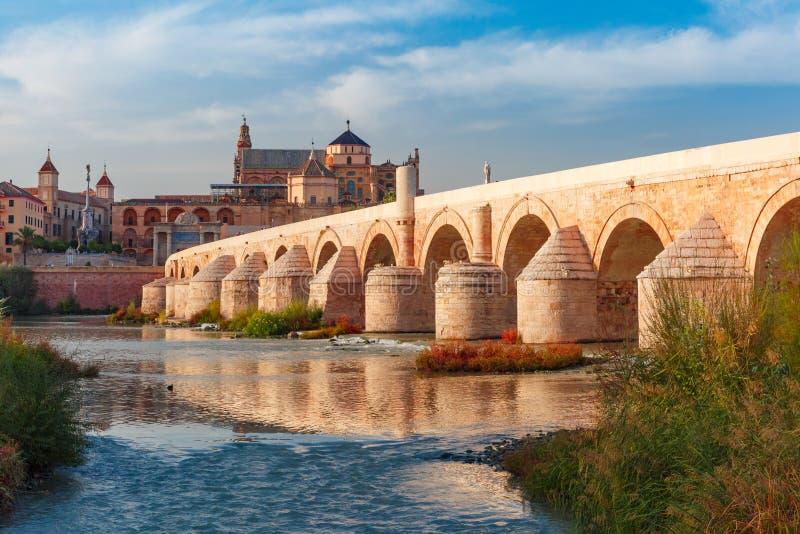 梅斯基塔和罗马桥梁在科多巴,西班牙 免版税库存图片