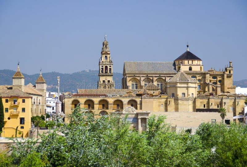 梅斯基塔大教堂(清真大寺)在科多巴 免版税库存照片