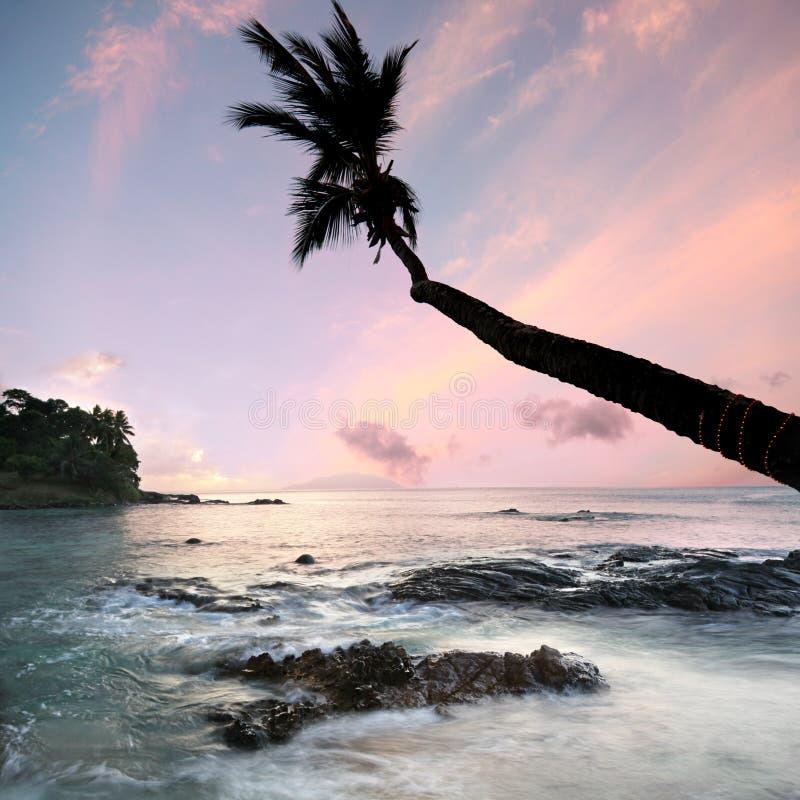 梦想的塞舌尔群岛 库存照片
