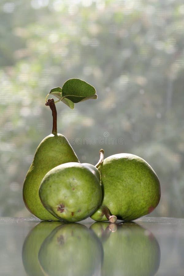 梨与反射的研究静物画 库存照片