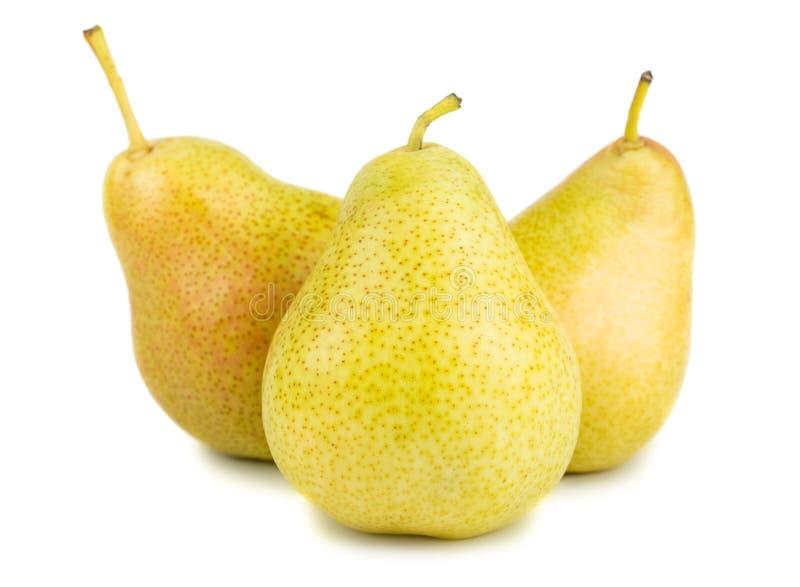 梨成熟三黄色 库存图片