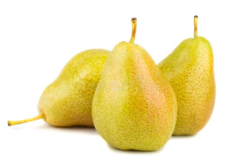 梨成熟三黄色 免版税库存照片