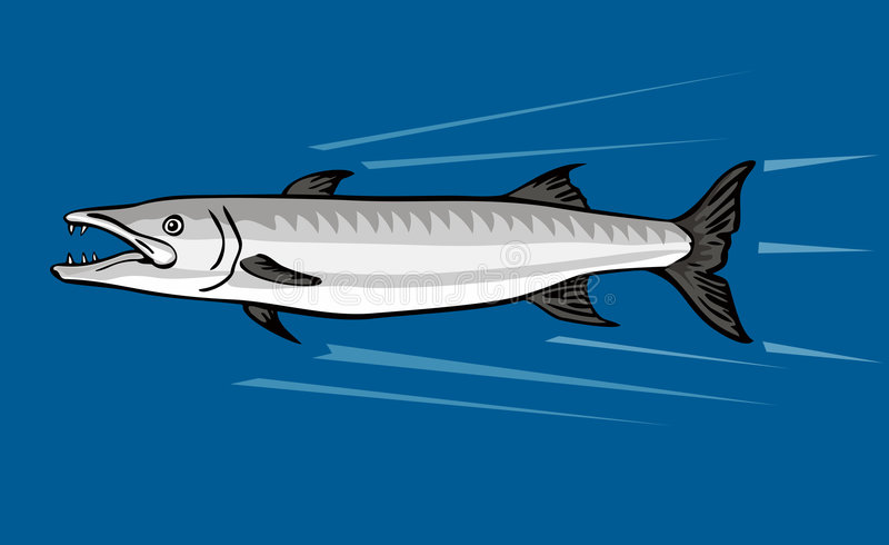 梭子鱼狩猎牺牲者 向量例证