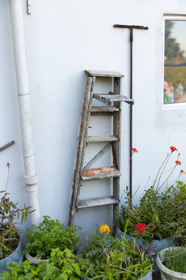 梯子和锄 免版税库存照片