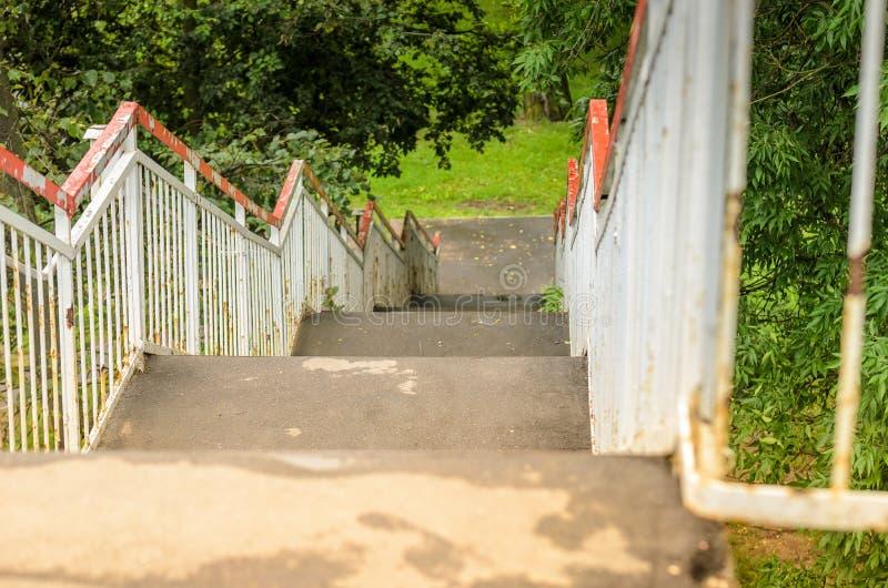 梯子在绿色/从一架梯子的下降中的公园在公园在好日子 图库摄影
