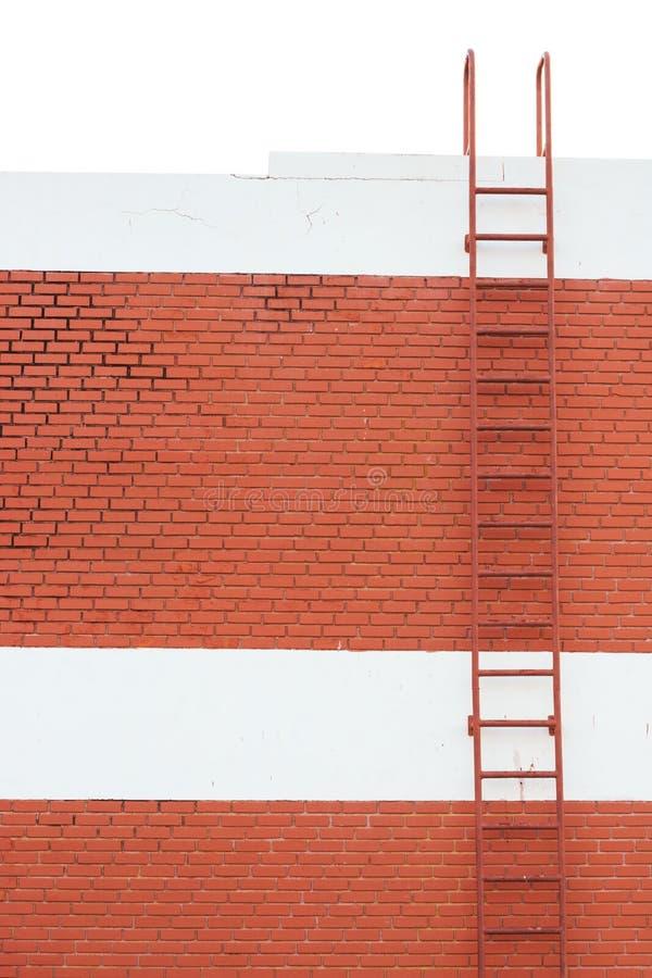 梯子成功 库存图片