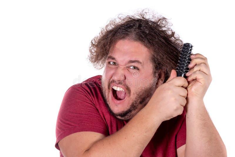 梳他的有在白色背景隔绝的一把小黑梳子的被缠结的和淘气头发的肥胖人尝试接近的画象  图库摄影