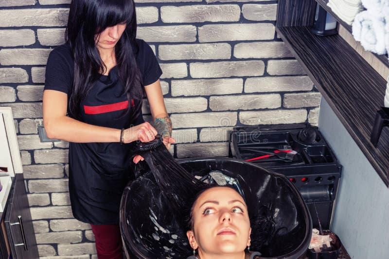 梳年轻美丽的妇女的头发的可爱的美发师  库存照片