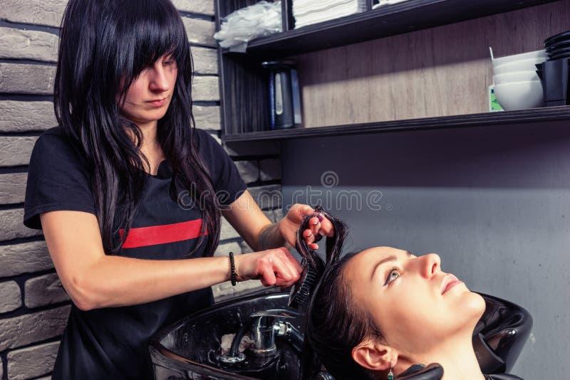 梳年轻美丽的妇女的头发的wa的深色的美发师 免版税图库摄影