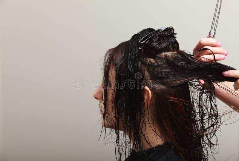 梳头发理发美容院的发式专家妇女客户 免版税图库摄影