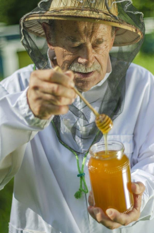 检查他的在蜂房的资深养蜂家蜂蜜 免版税图库摄影