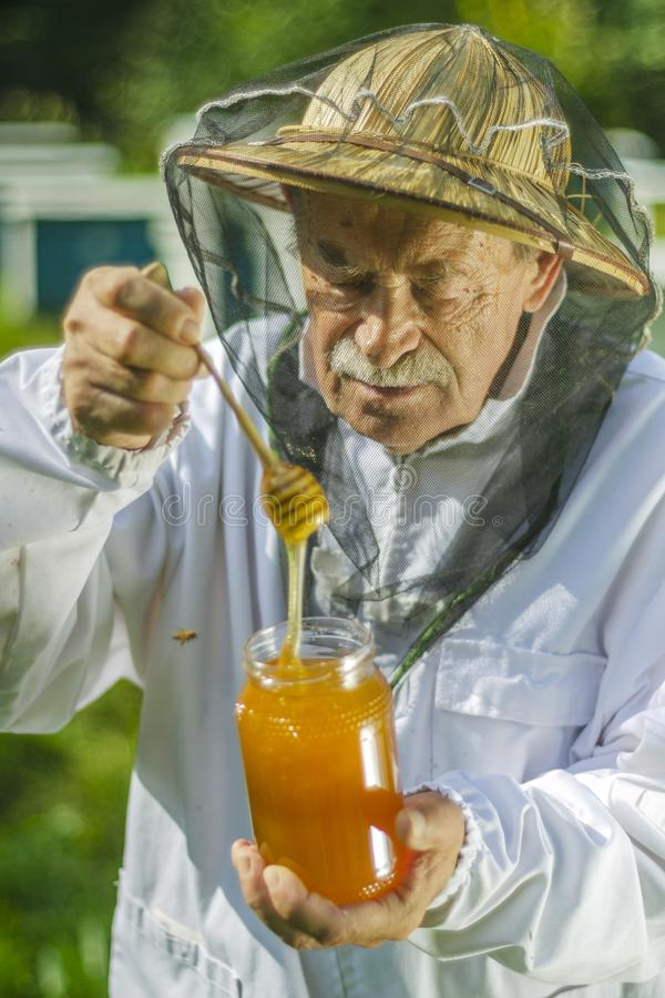 检查他的在蜂房的资深养蜂家蜂蜜 免版税库存图片