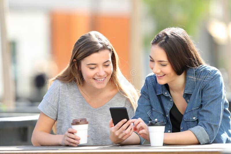 检查智能手机网上内容的两个朋友在公园 免版税库存照片