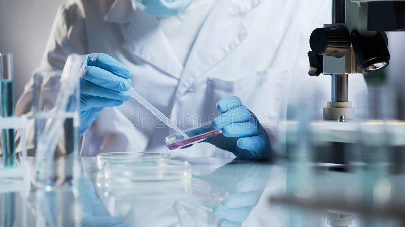 检查材料的化验员通过创造化学反应用试剂 库存图片