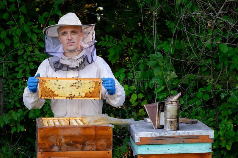 检查框架的防护工作服的蜂农在蜂房 蜂农拿着一个蜂窝用在他的新鲜的蜂蜜 免版税图库摄影