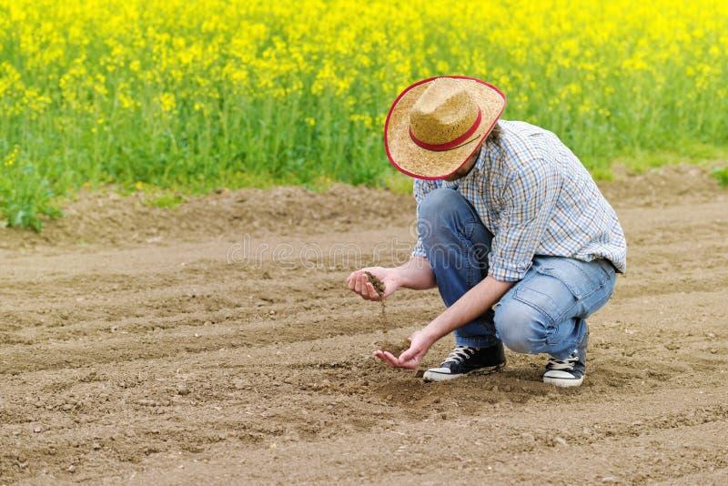 检查肥沃农业农场土地的土壤质量的农夫 库存照片