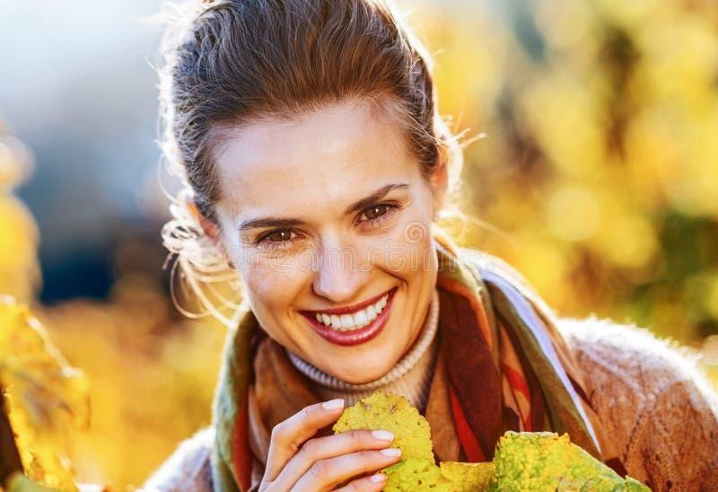 检查葡萄树的妇女种葡萄并酿酒的人在秋天葡萄园里 库存照片