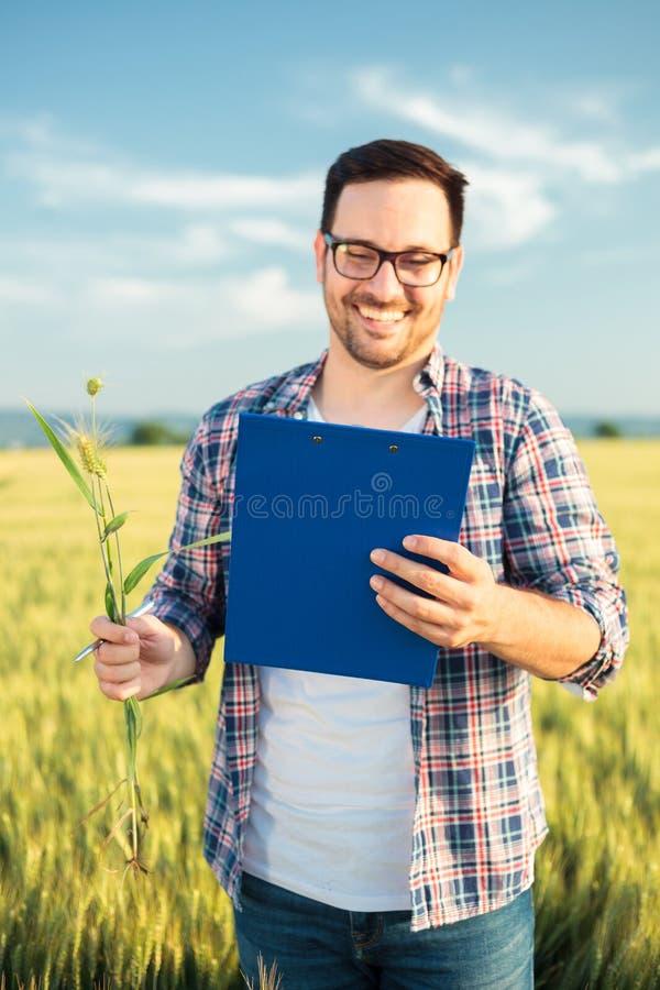 检查麦田的微笑的年轻农艺师或农夫在收获前,写数据给剪贴板 在前面的选择聚焦 免版税库存图片