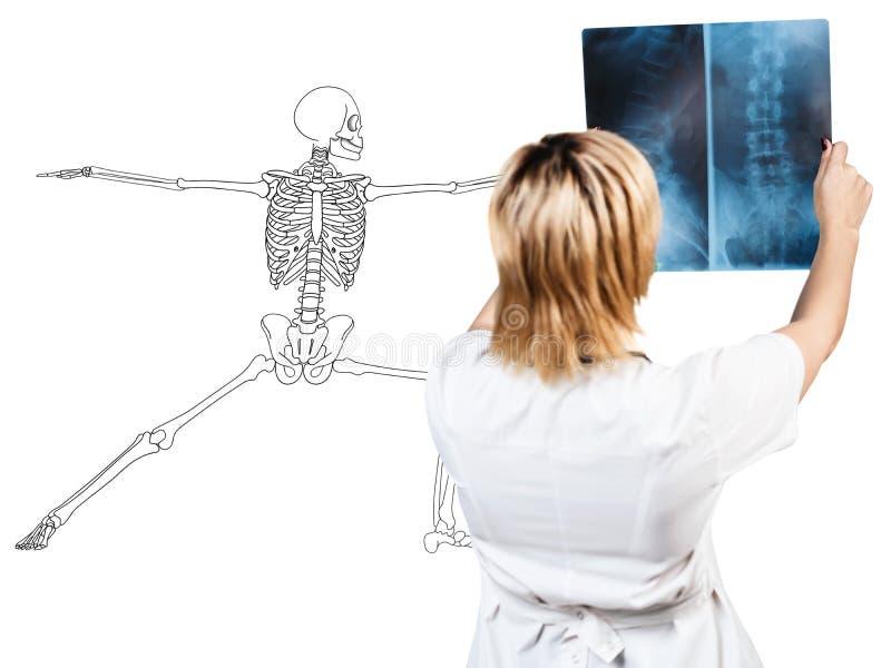 检查X-射线的放射学家妇女在患者附近 免版税库存图片