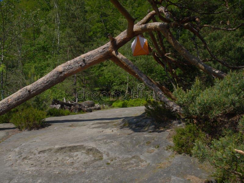 检验站棱镜和尖刻的composter orienteering的体育的 图库摄影