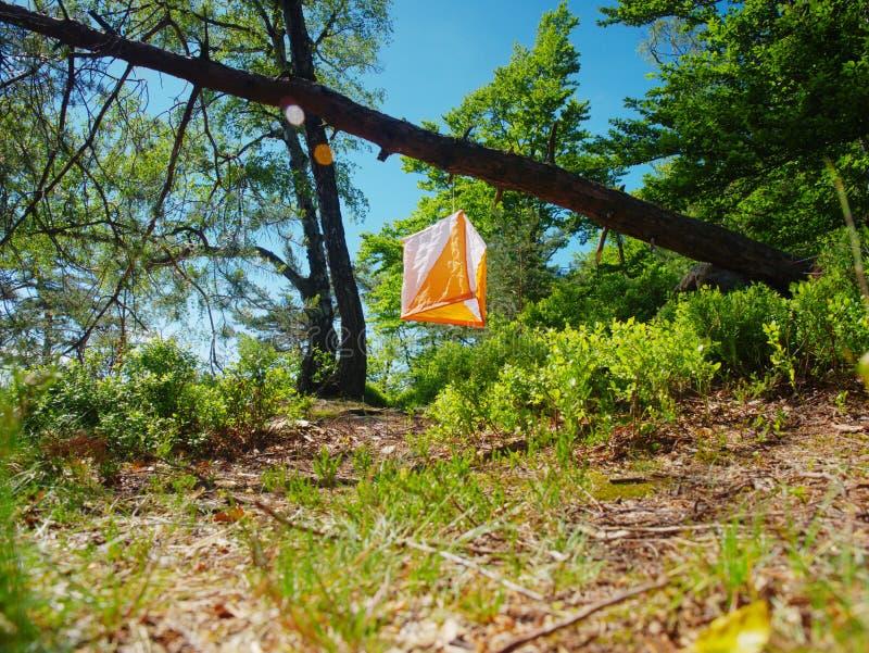 检验站棱镜和尖刻的composter orienteering的体育的 免版税库存照片
