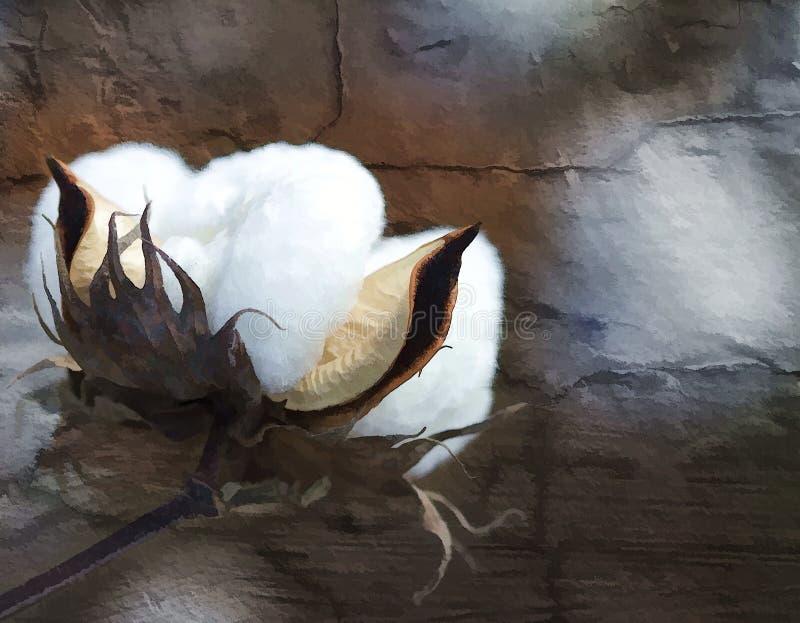 棉花与难看的东西纹理3的蒴艺术 库存例证