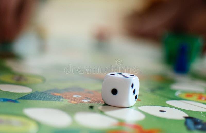 棋和模子在领域 免版税库存图片