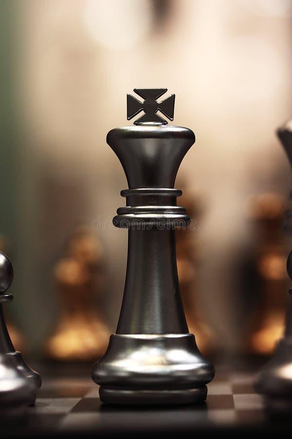 棋国王 向量例证