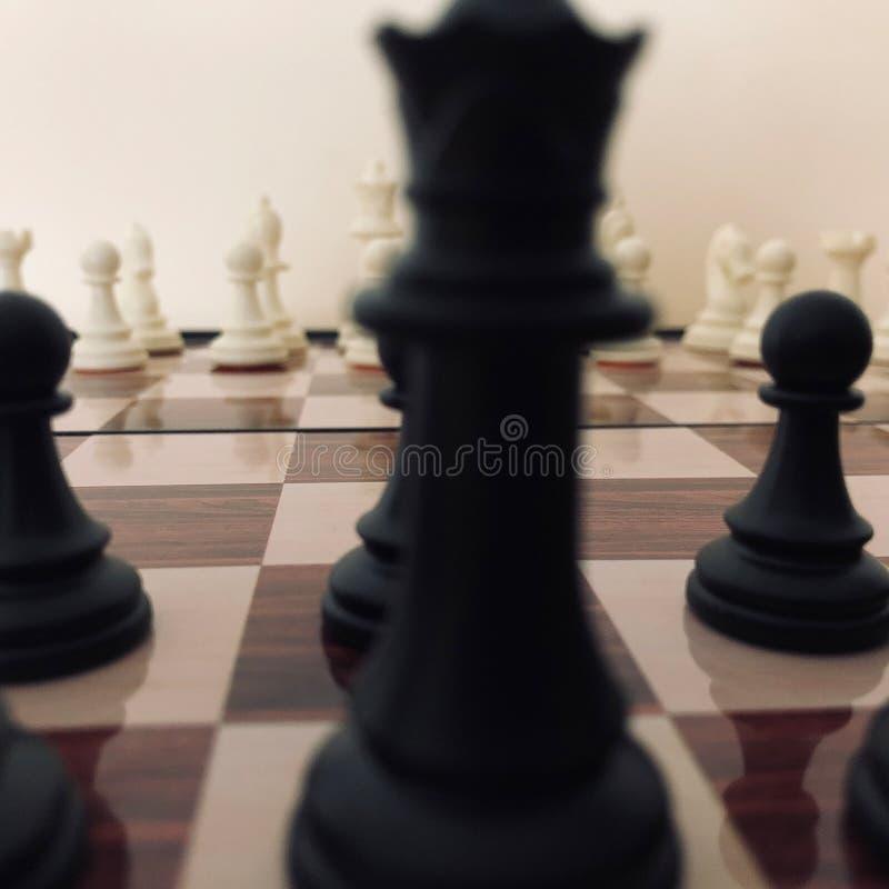 棋盘棋子的陈列零件 免版税图库摄影