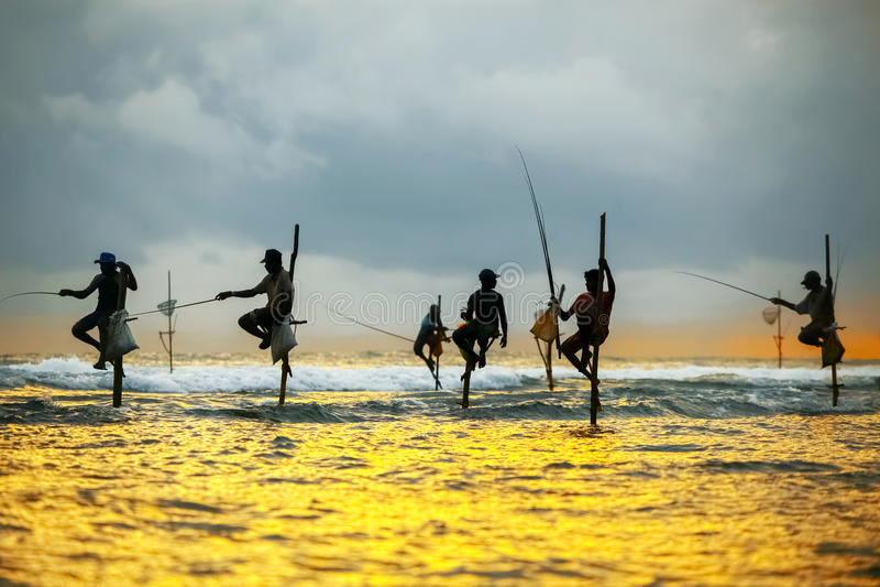棍子的传统渔夫在日落在斯里兰卡 免版税库存照片