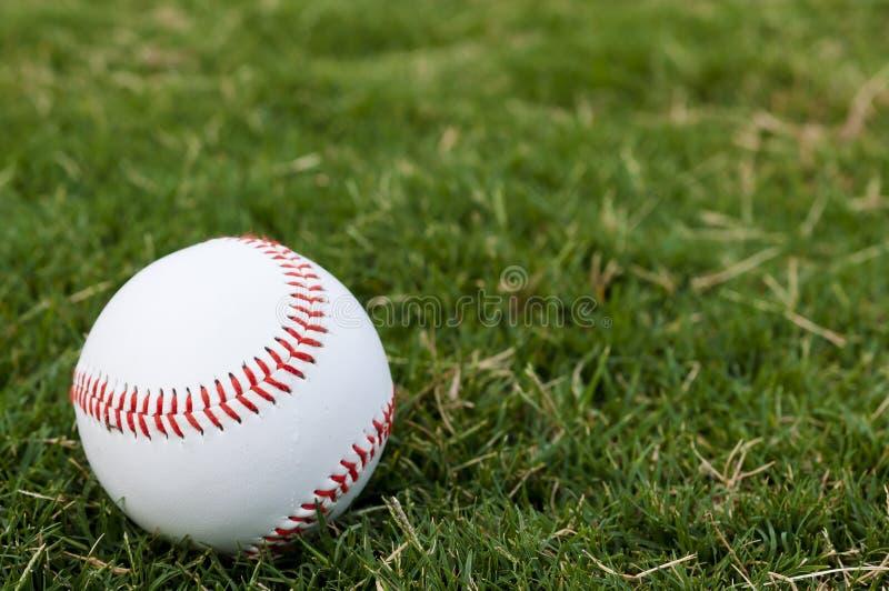 棒球特写镜头领域 图库摄影