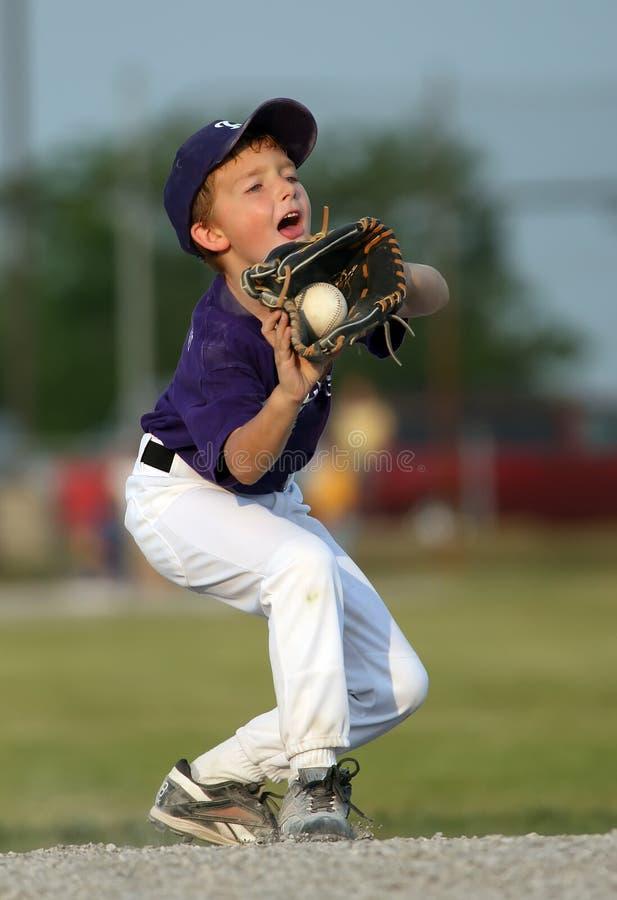 棒球男孩捉住 库存图片