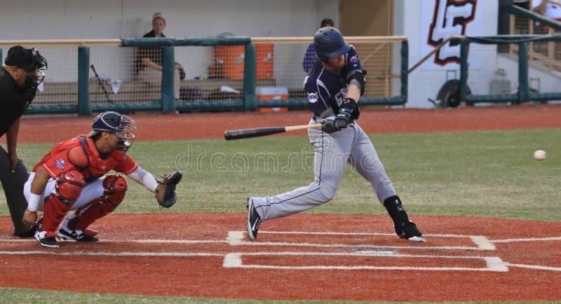 棒球击球手行动 免版税库存照片