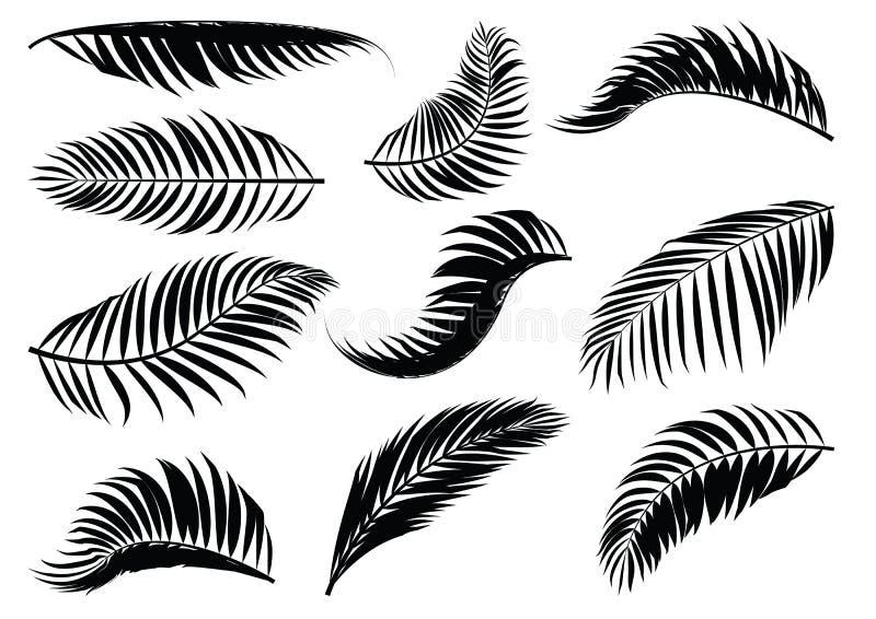 棕榈叶剪影 库存例证