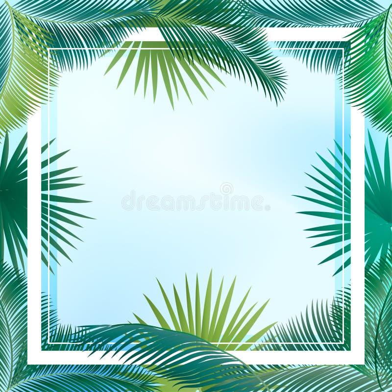棕榈叶框架 向量例证