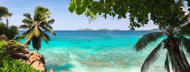 棕榈和热带海海滩全景 银昂斯市的来源d'拉迪格岛海岛 r 免版税图库摄影
