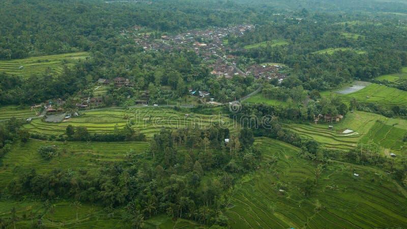 棕榈和米大阳台包围的镇的空中图片 图库摄影