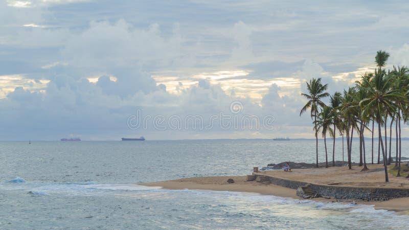 棕榈和蓝色海和蓝天Ondina萨尔瓦多巴伊亚巴西 免版税图库摄影