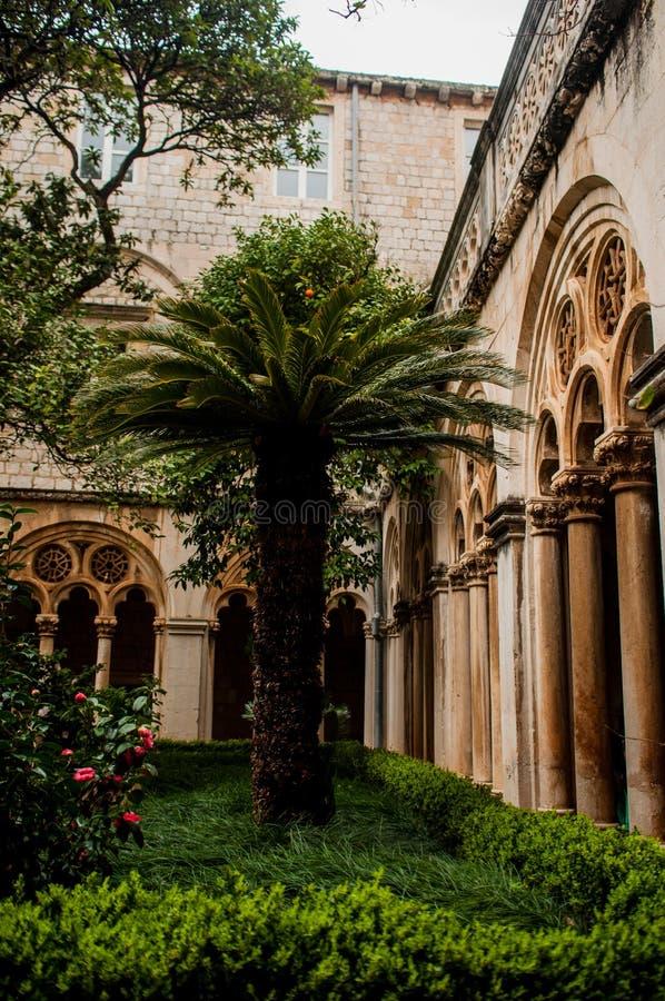 棕榈在修道院的庭院里 免版税库存照片