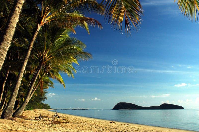 棕榈小海湾海滩 免版税库存图片