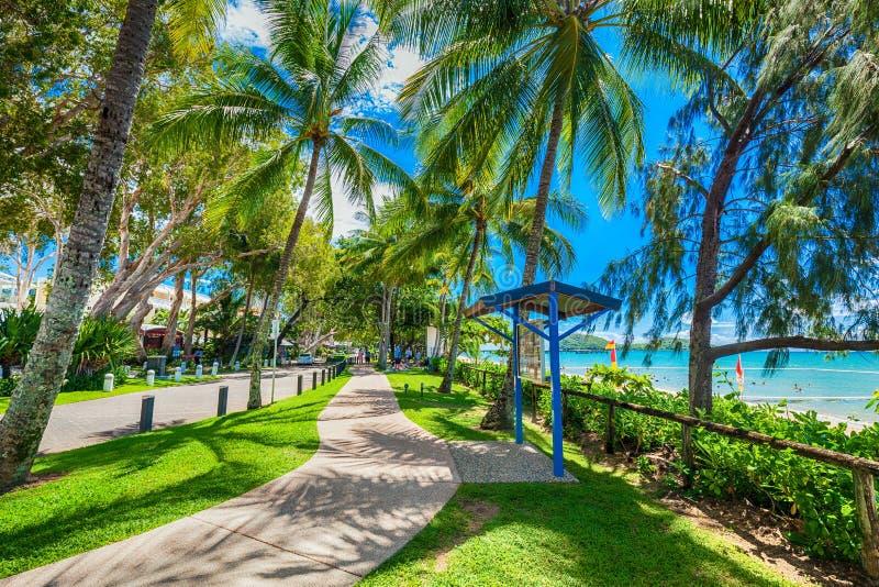棕榈小海湾,澳大利亚- 2016年3月28日 棕榈小海湾的广场 免版税图库摄影
